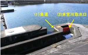 鏡川 江ノ口鴨田堰 魚類迷入防止パネルの設置 - 高知市公式ホームページ