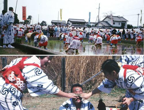 どろんこ祭り - 高知市公式ホームページ